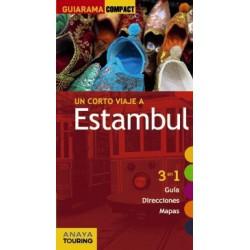 Un corto viaje a Estambul