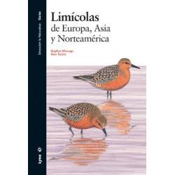 Limícolas de Europa, Asia y Norteamérica