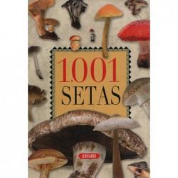 1001 Setas
