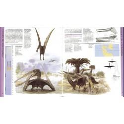 Dinosaurios voladores, pterosaurios