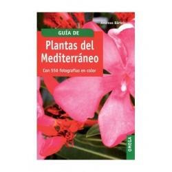 plantas del mediterráneo