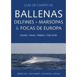 Ballenas, delfines,...