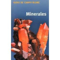 Guía Campo Minerales