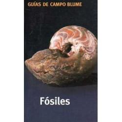 Guía Campo Fósiles